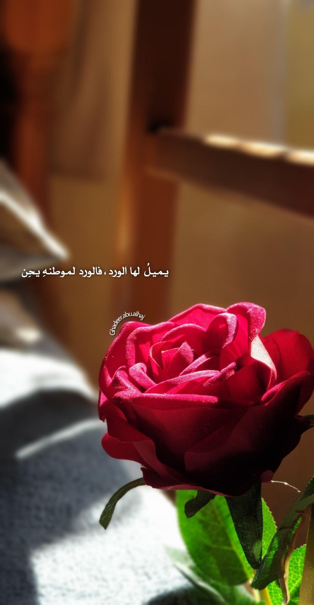 يميل لها الورد فالورد لموطنه يح ن Love Quotes Wallpaper Pink Wallpaper Iphone Book Clip Art