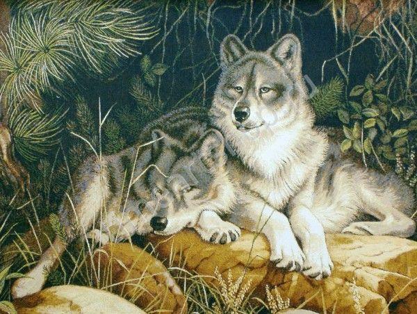 Волки, картина раскраска по №, размер 40х50см | Картины ...