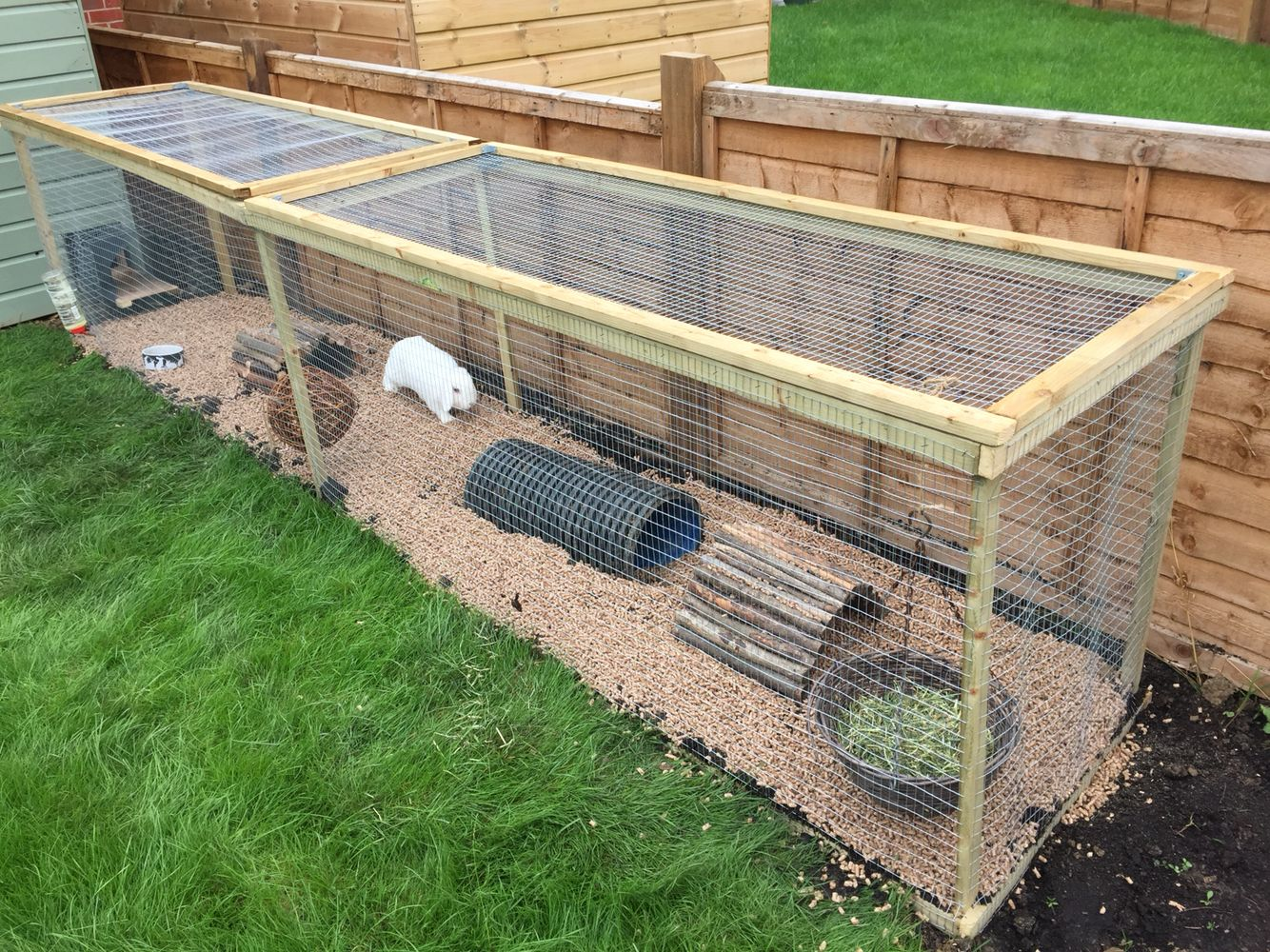 Homemade rabbit run pinteres for Chicken enclosure ideas