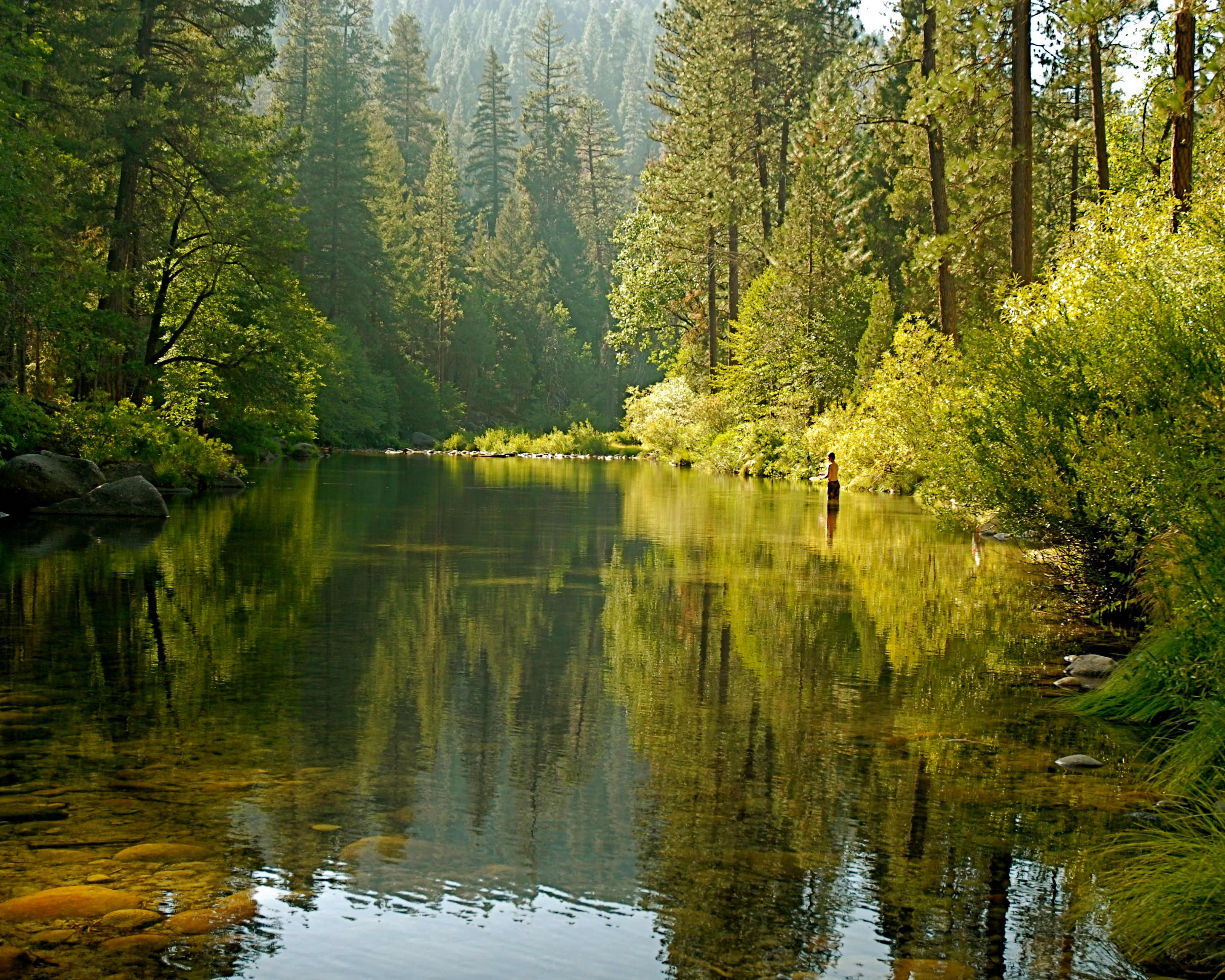 36 Best Yosemite Camping Images On Pinterest