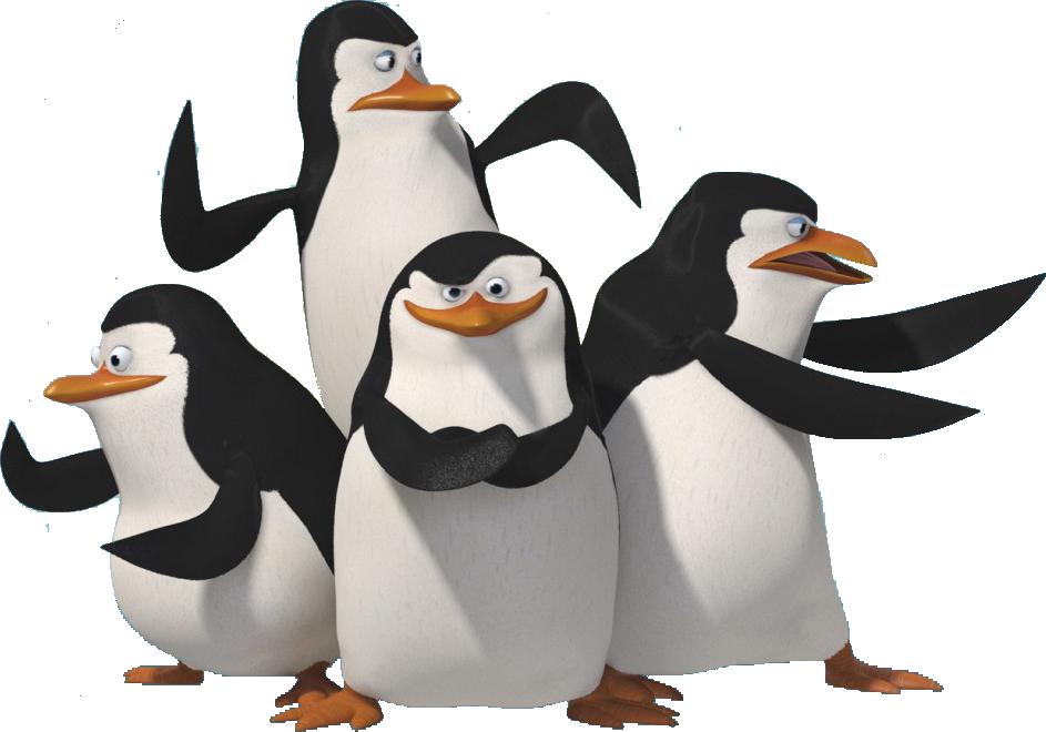 Madagascar Penguins Pinguins De Madagascar Filme Madagascar Pinguins