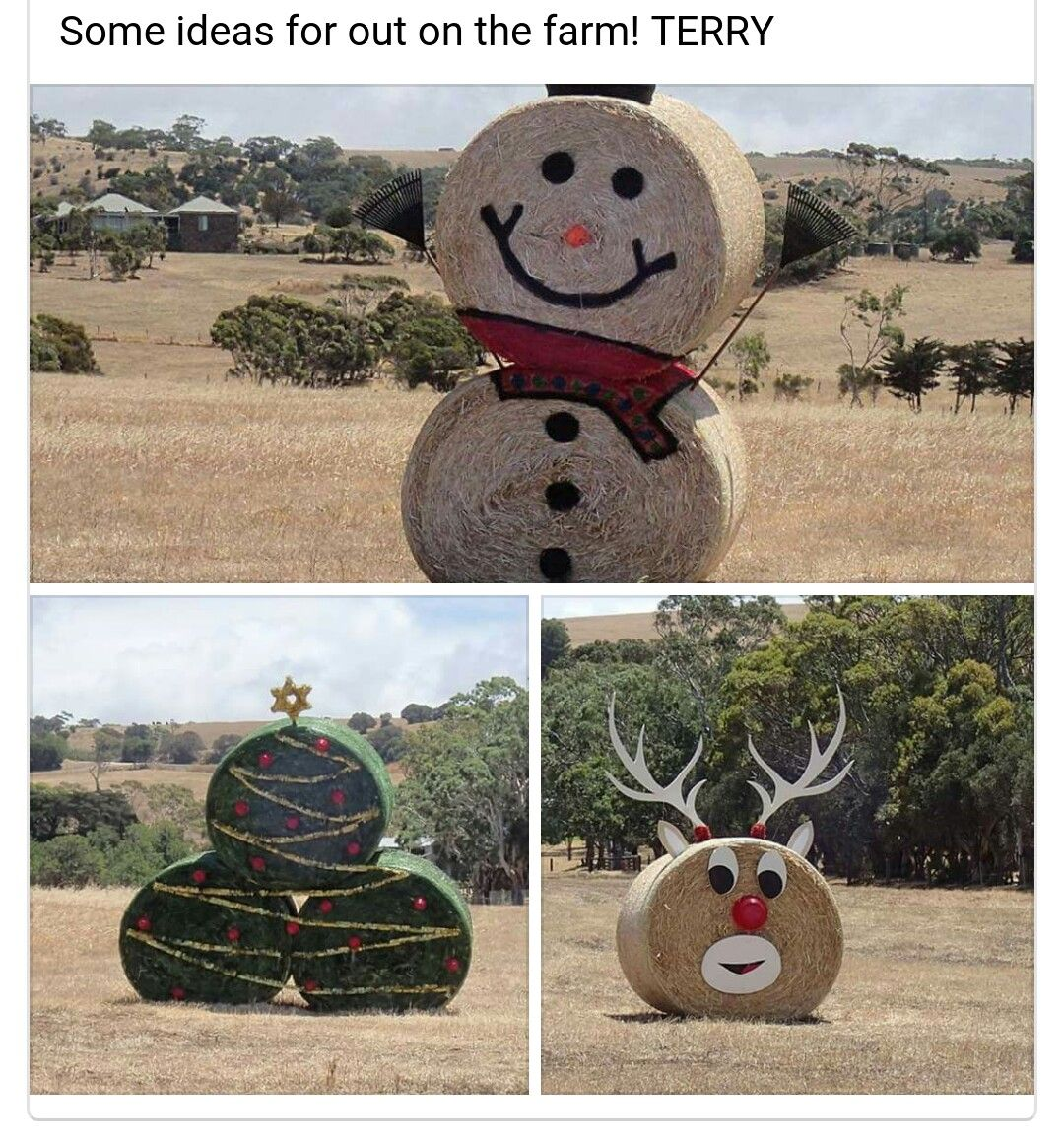 Haybales Hay Bale Decorations Christmas Decorations