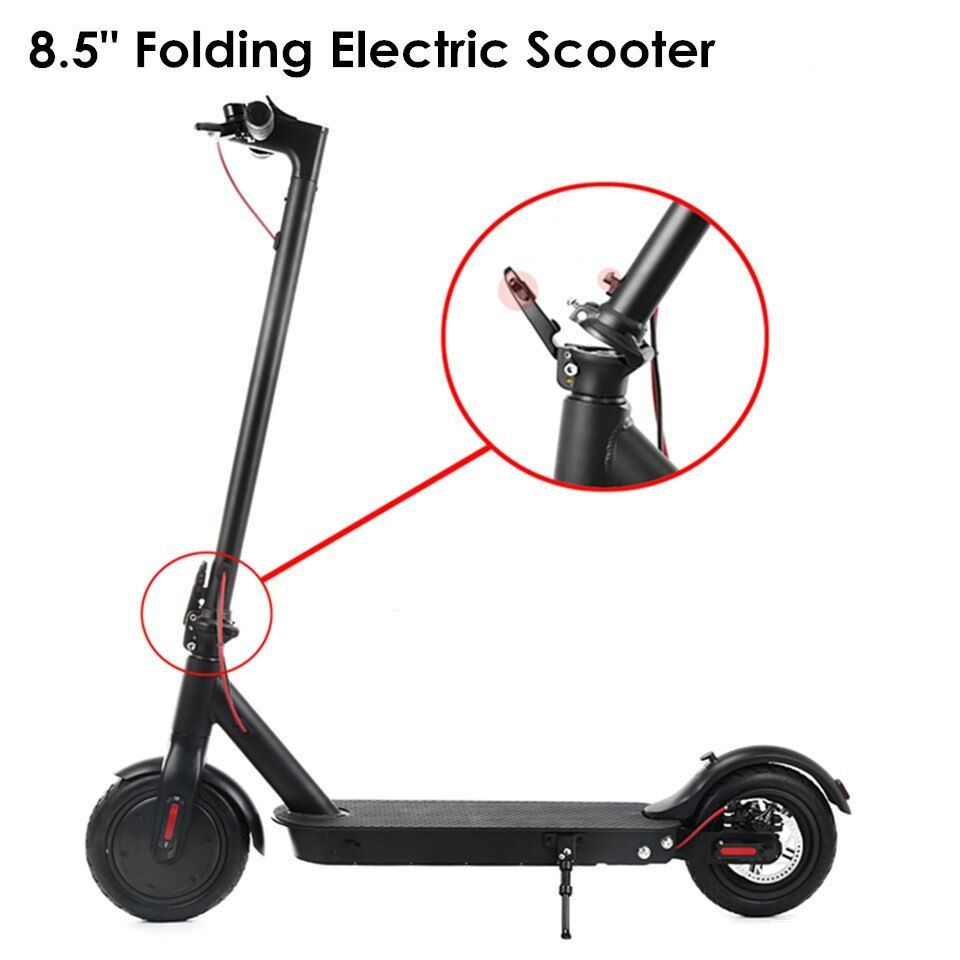 Electric Skateboard Scooter For Adults