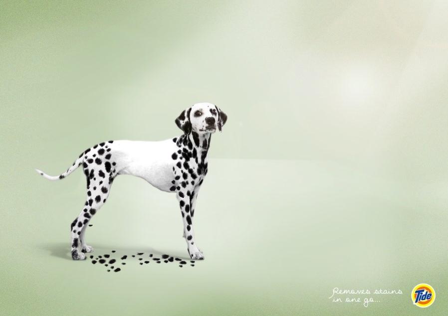 Image result for 코성형 기발한 광고