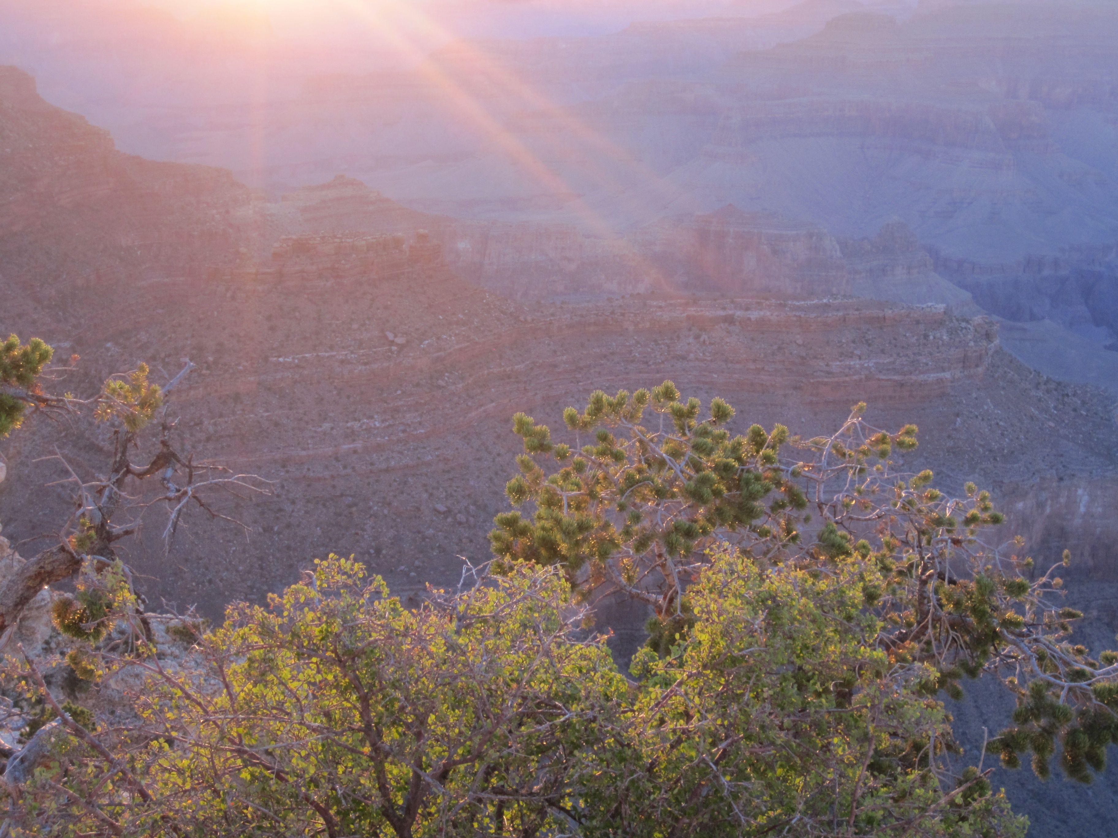 Grand Canyon at Sunset. Photo by Linda Pacienza