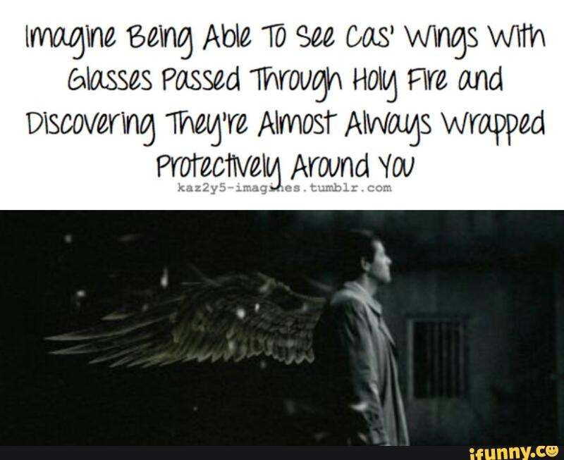 """I slide the glasses on my face and look around me. This is the sixth time I've put these glasses on and every time Cas's wings seem to always be wrapped around me. """"Cas, why are your wings always wrapped around me??"""" I ask and he smiles and wraps his arms around me as well. """"I care about you deeply Rose. I must protect you."""""""