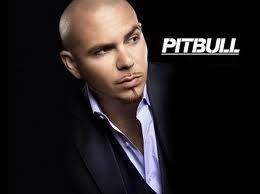 Would Love To Go To One Of His Concerts Pitbull Rapper Pitbull Songs Pitbulls