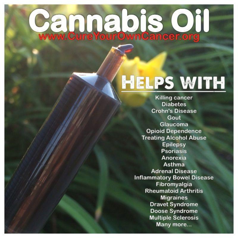 cannabis cures Can cannabis cure cancer  cannabis cures cancer is marijuana & cannabis oil the natural cure for  cannabis cures cancer is marijuana & cannabis oil the.