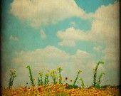 Fine Art Photography Prints-Texas Landscape-Southwestern Home Decor-Rustic Art Prints
