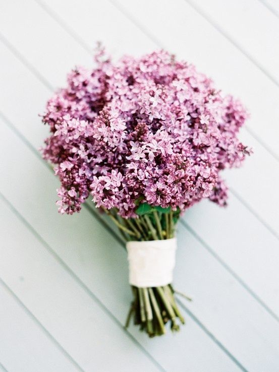 Lilacs. Literally, the best smelling flowerz. Thankyou, Jesus for ...