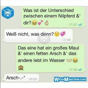 Lustige WhatsApp Bilder und Chat Fails 188 - Nilpferde