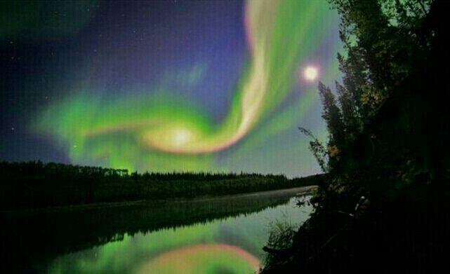 N light wonder