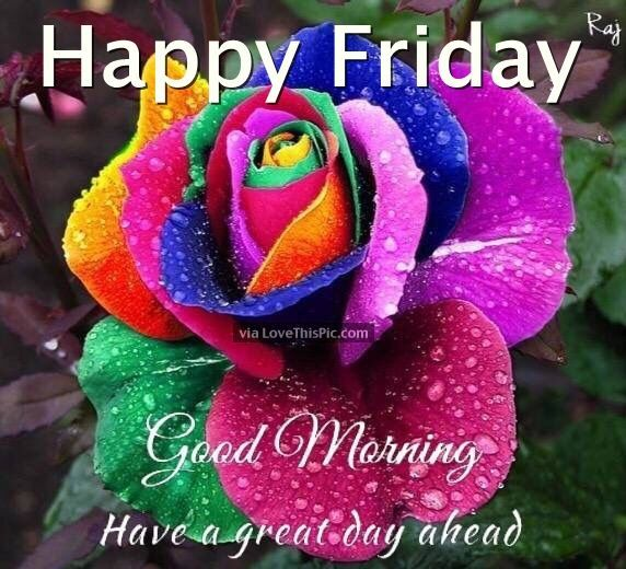 happy friday good morning have a great day ahead friday