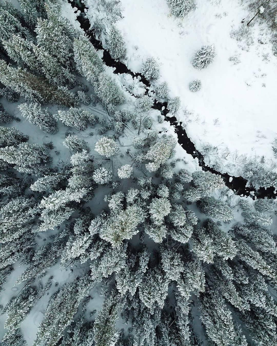 #Winteriscoming -