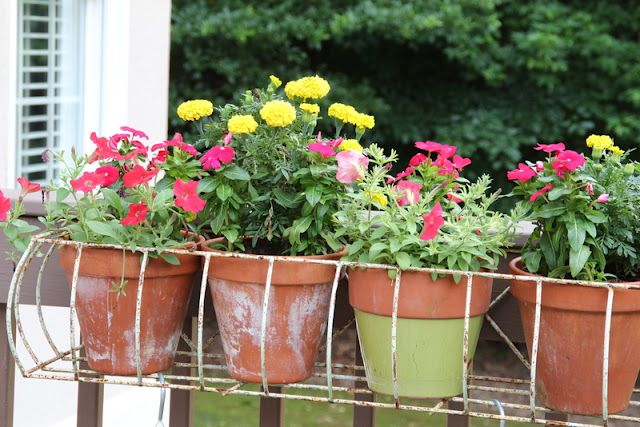 Metal Wire Window Box With Flower Pots Metal Window Boxes Window Box Flowers Window Boxes
