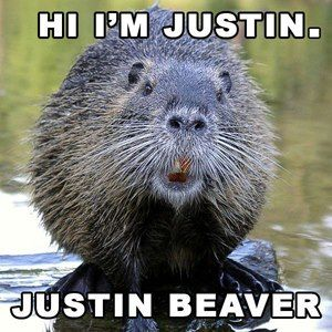 Hi, I'm Justin. Justin Beaver. :D Repin or Retweet if you like me. :D  #myMINEOLA Cc. @Aelke_Mariska