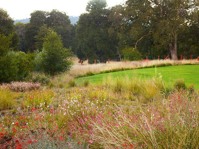 Проект сада в резиденции Вудсайд   Проекты садов   Журнал «Дом и сад»