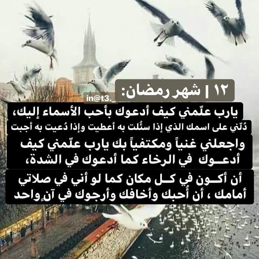Reposted From T3 حساب لـ فوائد الشيخ بدر المشاري T3 P اكتب ذكر دعاء نصيحه