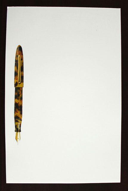 Edison Herald Amber Tortoise Notepad