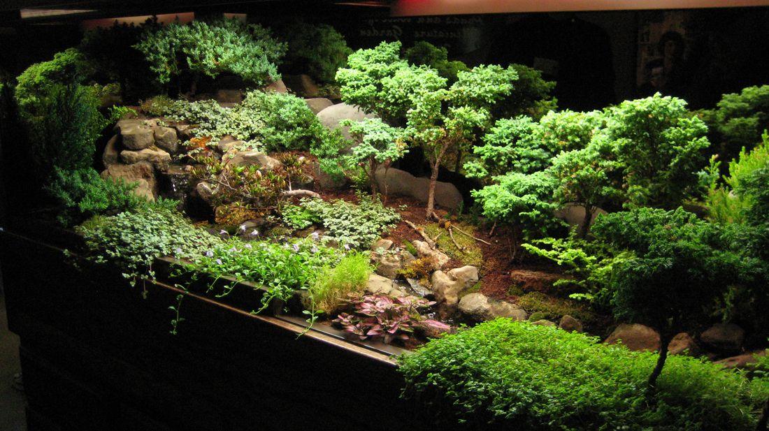 6a01053657c83c970b017d41e655b4970c pi 1100 617 for Indoor japanese garden plants