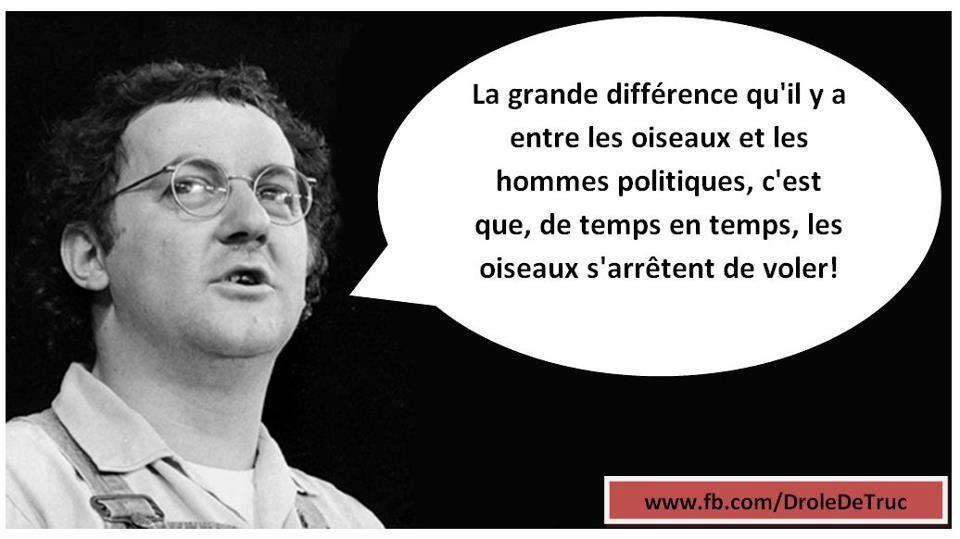 Coluche coluche pinterest coluche hommes politiques - Difference entre pin et sapin ...