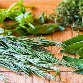 How To Store Fresh Herbs Store Fresh Herbs Herbs Fun Cooking