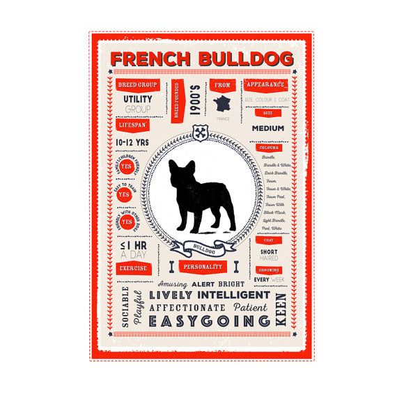 This Stylish Dog Breed Infographic Printable Poster Contains Some