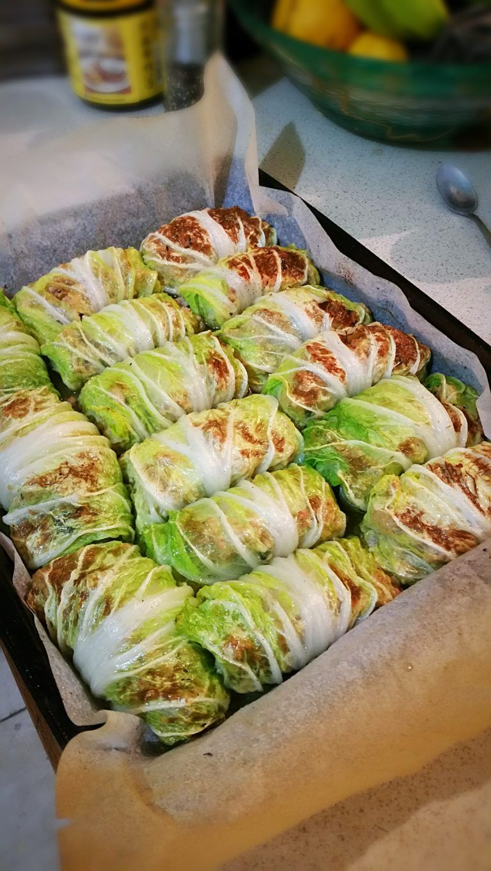 Low carb dumpling spring rolls recipe spring rolls