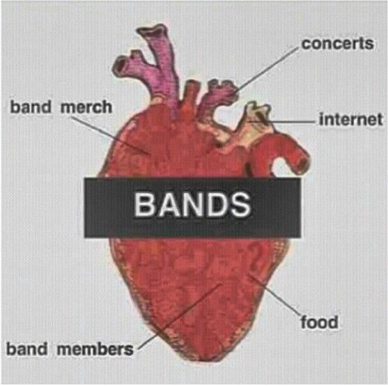 Oh my gods a diagram of my heart bands and such its a diagram of my heart ccuart Image collections