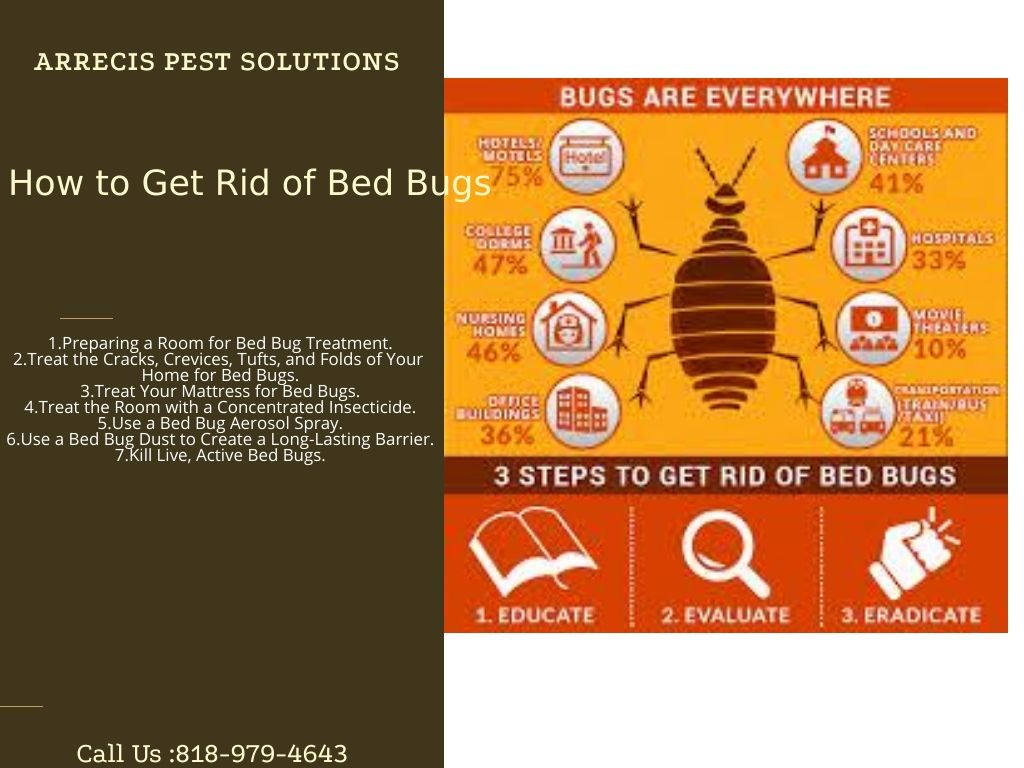 This Image Is About How To Get Rid Of Bed Bugs Health Care Home Care Rid Of Bed Bugs Bed Bugs Bed Bug Control