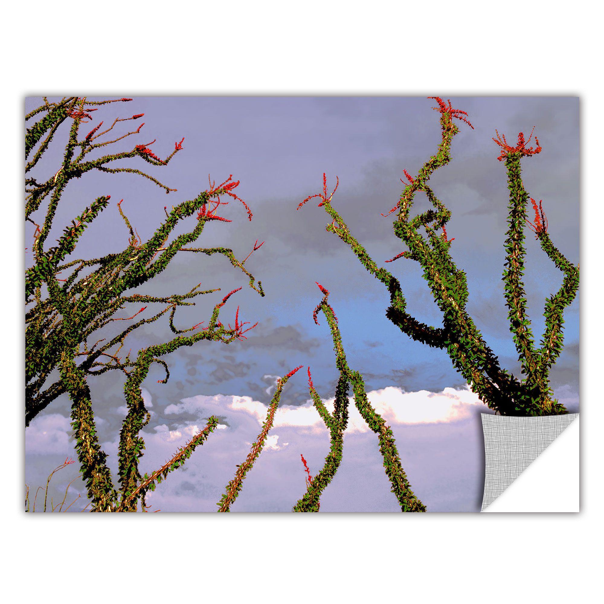 Removable wall art graphic - Artwall Dean Uhlinger Yuma Desert Spring Art Appeelz Removable Wall Art Graphic