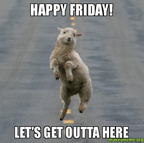 19a38b3d34d7ffd1c8ae4d65fdf0e98d leaving work on a friday! funny meme laughoftheday animals