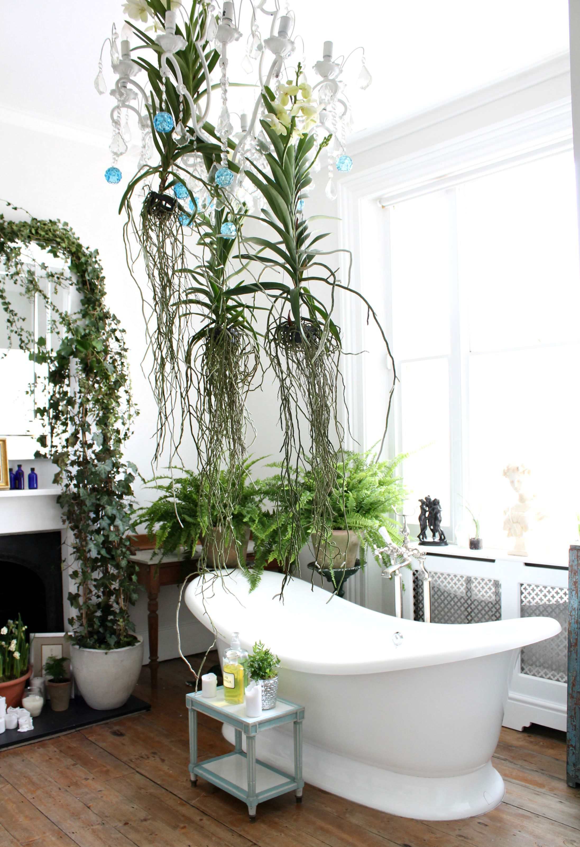 eco luxe and unexpected wild 2 trends for decorating with indoor plants urban jungle. Black Bedroom Furniture Sets. Home Design Ideas