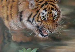 Startled – A Tiger Painting... Kat Davies
