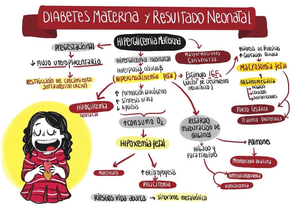 diabetes tiroides y embarazo diapositivas