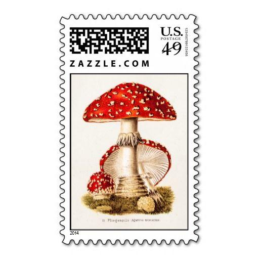 Vintage 1800s Mushroom Red Mushrooms Template Stamp