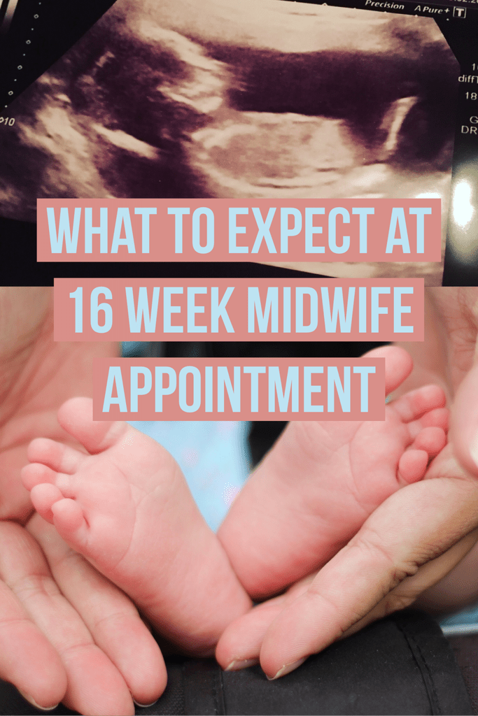 16 Weeks Pregnant, What to Expect at 16 Week Midwife Check