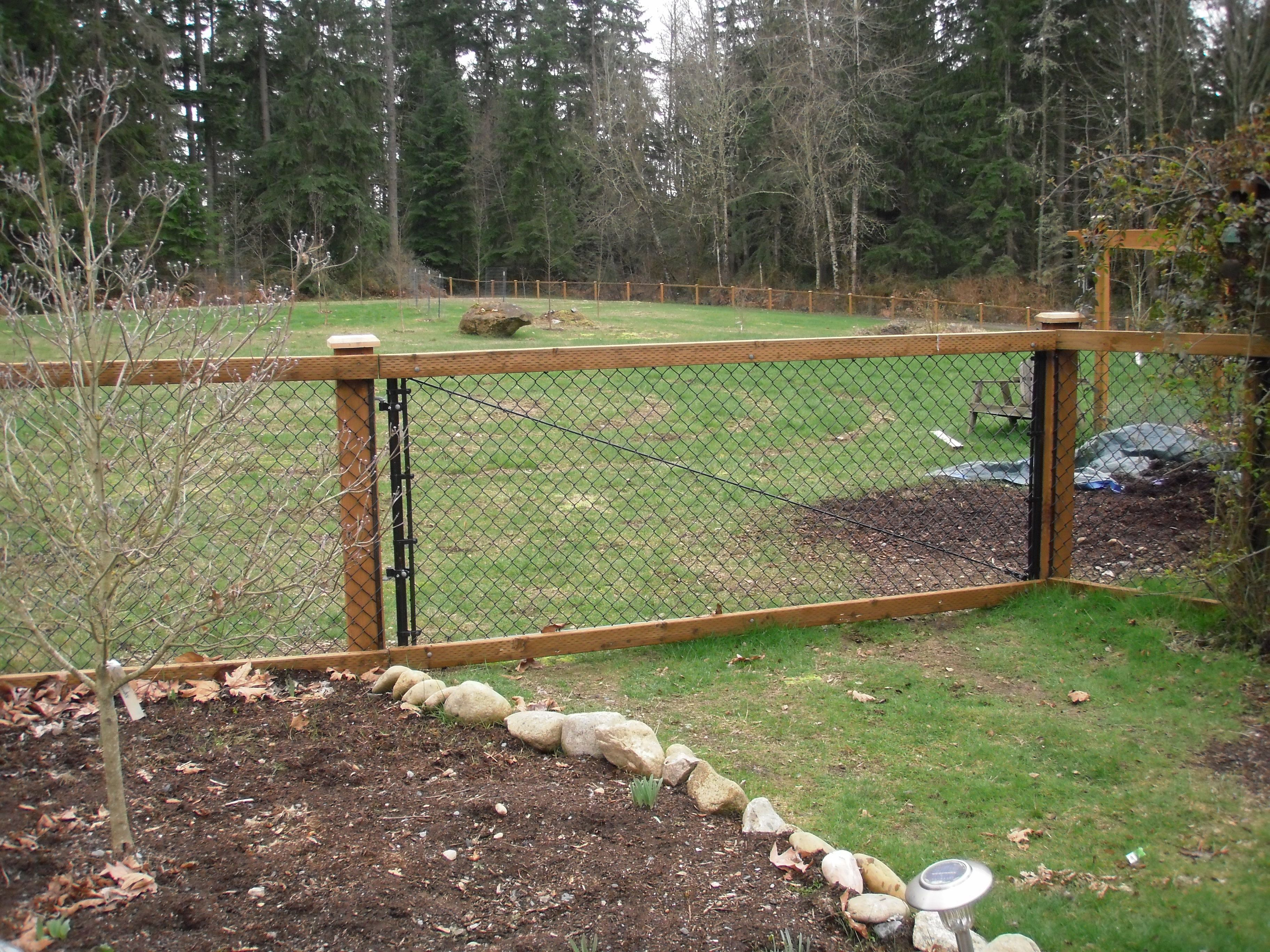 Chain Link Fence With Cedar Wood Trim Black Chain Link