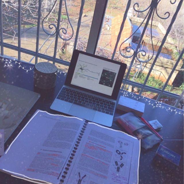 Study--Resumo @heavell.s