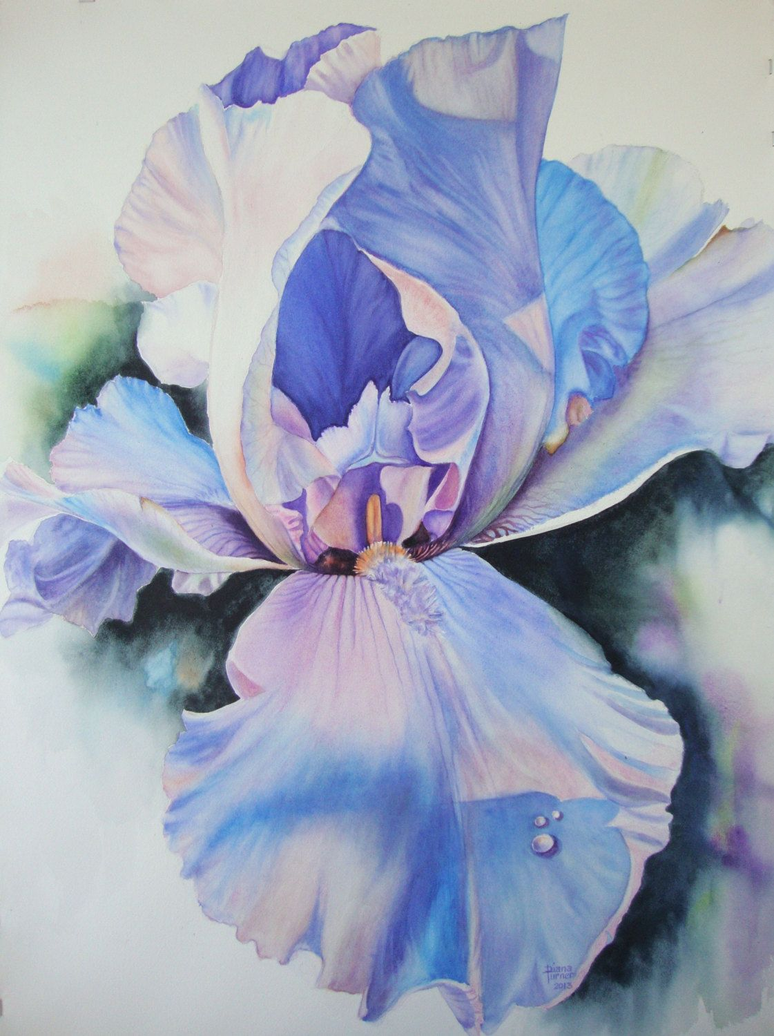 Iris original painting watercolor painting original watercolor iris watercolor painting original limited edition giclee print iris flower art iris by diana m turner 11 x 14 by dianamturnerart on etsy izmirmasajfo