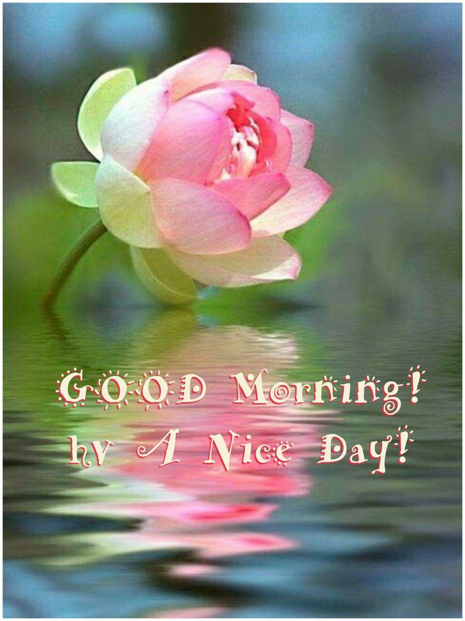 Good morning Good Morning Pinterest Blessings