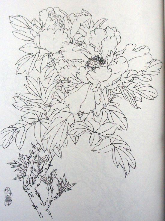 DSC01306.jpg (550×738) | embroidery outline design | Pinterest ...