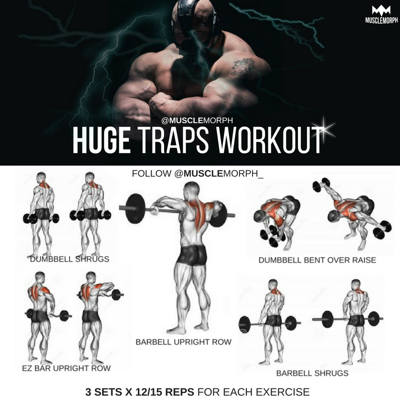 Huge Traps Workout Exercises Musclemorph Musclemorphsupps