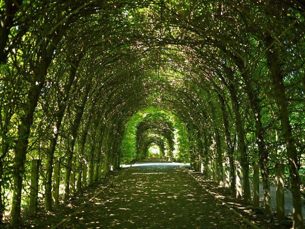 Staten Island Botanical Garden Google Search Snug Harbor Staten Island Snug Harbor Daycation