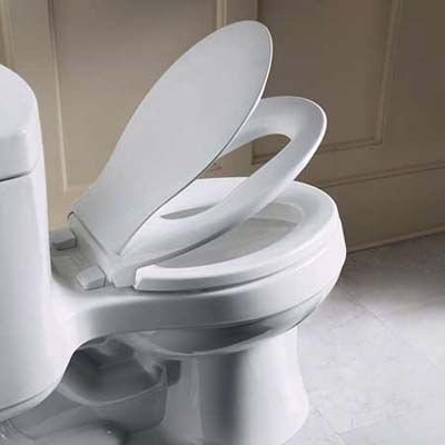 Transitions Toilet Seat For Kids Bathrooms Looks A Lot Better