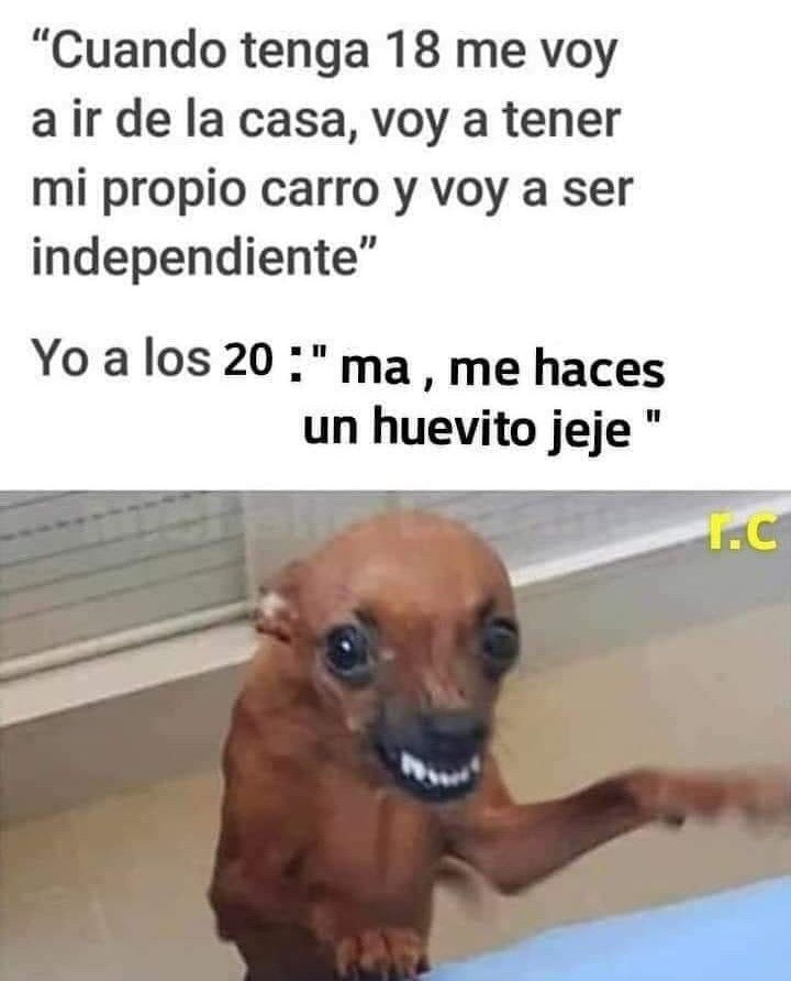 Risa Meme Memes Espanol Memes Chistosos En Espanol Memes De Risa Memes