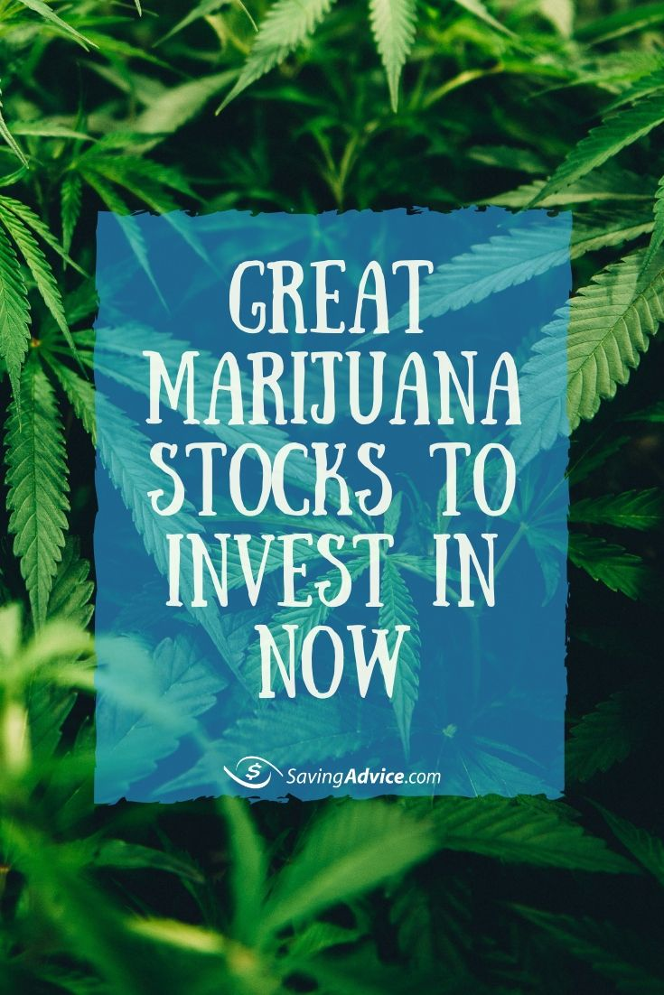 If you're considering taking the leap and investing in marijuana stocks, here are a few worth exploring now.