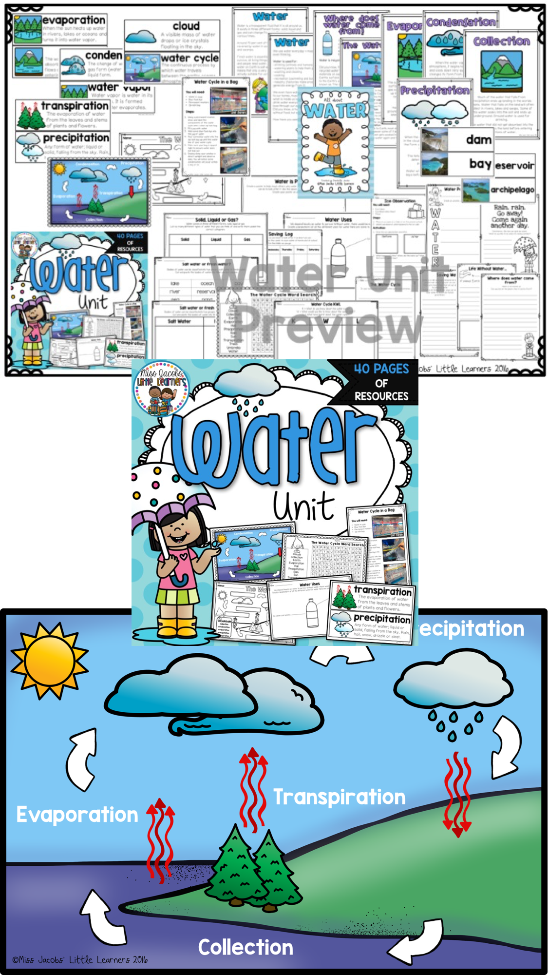 Water All About Water Non Fiction Unit Including The Water Cycle