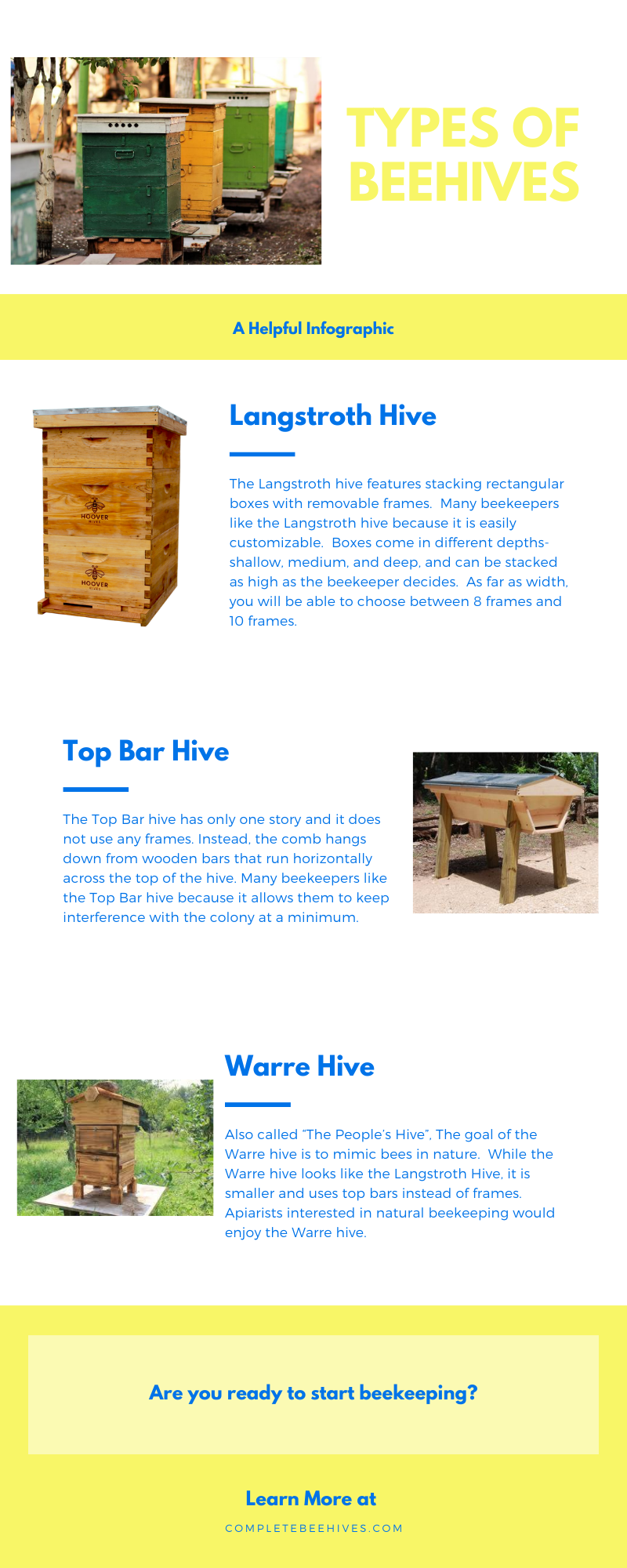 Types Of Beehives Infographic In 2020 Bee Hive Infographic Langstroth Hive