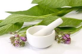 Homemade Comfrey Ointment. Comfrey roots and leaves contain a substance that helps new skin cells grow, along with other substances that reduce inflammation and keep skin healthy.